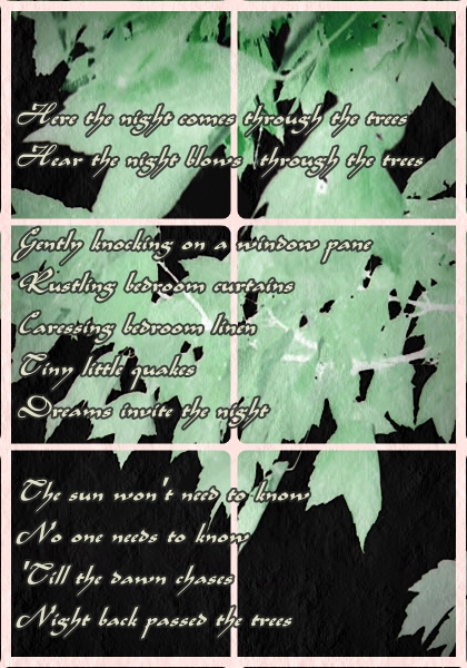 Hear the night (night quakes)