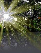 sunbeam-lake.jpg
